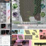 Lai Kwan Wong's Plants & Vegetation design idea for King George Square