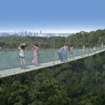 Artist's impression of Mt Coot-tha zipline suspension bridge