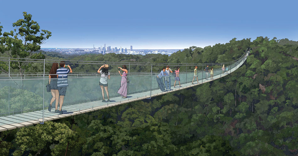 Artist's impression of Mt Coot-tha zipline suspension bridge