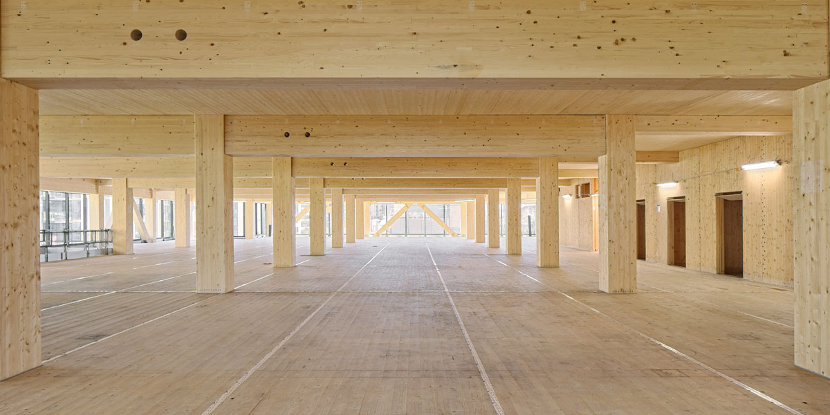 Picture of inside Australia's tallest engineered timber tower